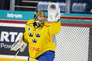 Samuel Ersson fick känna på landslagsspel efter succén i hockeyallsvenskan. Foto: Bildbyrån