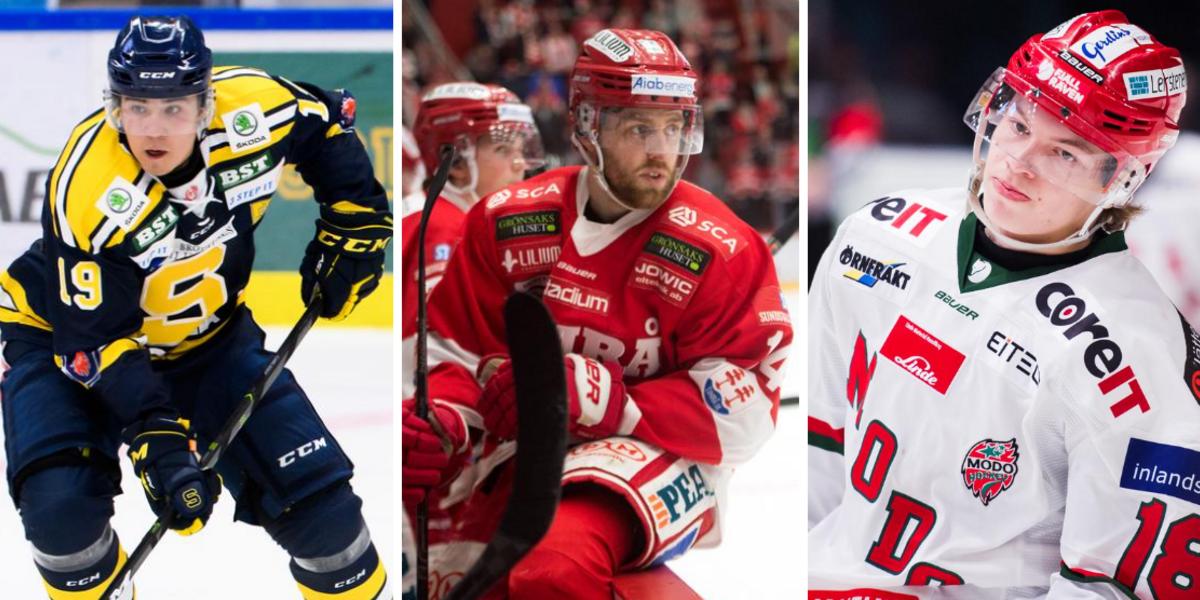 Uppgifter: Ingen publik – då vill en majoritet i hockeyallsvenskan skjuta upp seriestarten