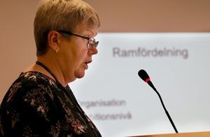 Catharina Norberg hade en ekonomisk genomgång innan själva mötet och gav sin bild av den situation kommunen befinner sig i.