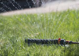 Bevattning av gräsytor ökar vattenanvändningen. Foto: Fredrik Sandberg/TT