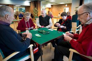 Veteraner i åldersgruppen över nittio år: Från vänster: Tore Sjöberg, Ingrid Buske, Knut Östlund, Inger Wallin och Melvin Berglund.