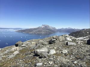 Grönland. Foto: TT