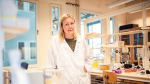 Gunilla Pettersson. Forskare vid Fiber Science and Communication Network, FSCN på Mittuniversitetet. Bild: Pressbild Mittuniversitetet.