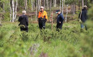 Tomas Rydkvist har åtskilliga års erfarenhet av naturvårdande arbete och var med när Jämtkrogens fjärilslandskap på allvar började diskuteras 2016.