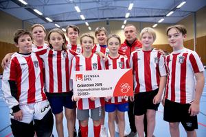 Köpmanholmen-Bjästa FF får 29 882 kronor i stöd Foto: Erik Mårtensson / BILDBYRÅN
