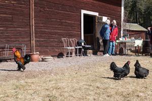 Alice Skrivargård och Monica Andersson minglar ute på gårdsplanen.