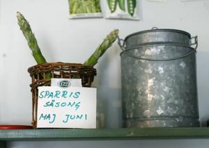 Första året blir det bara enstaka sparrisar på varje planta. Därefter blir det fler och fler.– Ska man ha sparris till en hel familj räcker det med 10-20 plantor, säger Christer Ekdahl.Allra bäst är sparrisen samma dag den skördas. Får stjälkarna stå i kallt vatten direkt efter skörd bevarar de sin spänst och blir mindre träiga längst ned mot foten.