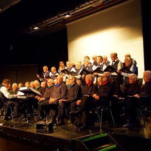 Bilden är från en tidigare konsert i Norrtälje. Läsarbild.