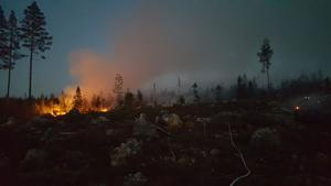 Bild från fältarbetet vid branden i Ängra.