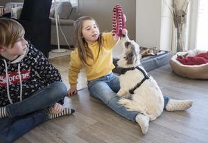 Colin och Kelly leker med hunden Moa.