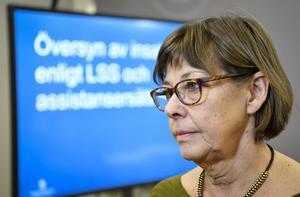 Gunilla Malmborg, regeringens LSS-utredare. Foto: Henrik Montgomery/TT