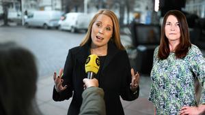 Annie Lööf gav på tisdagsmorgonen besked om att Centerpartiet kommer att rösta ner Kristerssons regeringsförslag. Foto: Pontus Lundahl
