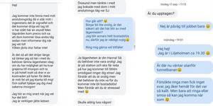Några av alla sms mellan Hanna Bladin och kvinnan som påstod sig hyra ut en lägenhet i Stockholm.