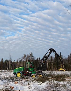 Efterfrågan på skogsmaskinförare är stor. Skedomskolan i Sollefteå, en del av Sollefteå gymnasium, är den enda skolan i länet med utbildningen.