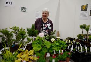 Ruth Sandström bland sina växter.