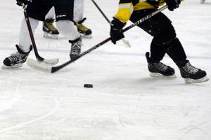 En man döms för att ha ofredat en pojklagsspelare i ishockey under en cupmatch i Malungs ishall i vintras. Obs: Bilden är tagen i ett annat sammanhang.