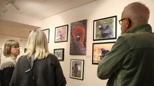Drygt 22 fotografer ställde ut sina foton i källaren. Det kom många besökare som ville titta på fotoutställningen.