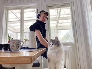 En liten katt hänger gärna med husse när det vankas elvakaffe.