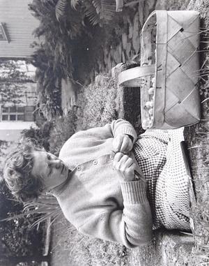 Min mor som snoppar krusbär i Hofors. Foto: Bengt Helmryd