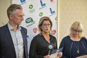Jörgen Edsvik, S, Åsa Wiklund Lång, S, och Helene Åkerlind, L, ska vara med och styra Gävle den kommande mandatperioden.
