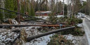 Foto: Henrik Ismarker/Spillersboda flygfoto. Bilden är tagen på Gräddö, Rådmansö.