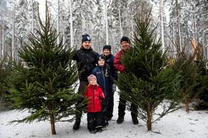 Det är många som vill ha en riktig gran över jul. Peter Sjölund och Petra Schedin Sjölund från Lomsjön var på plats med barnen Astrid, Edwin och farfar Ronny Sjölund från Banafjäl för att fynda årets julgran.