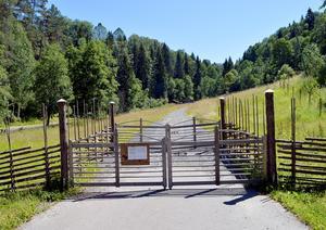 Kommunen renoverar i år både fäboden och fäbodstigen i Säterdalen.