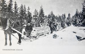 Timmerkörning med häst. Vykort från Svenbjörn Kilanders arkiv.