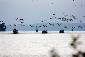 Här kommer kamerateamet i båten till vänster, och de tävlande deltagarna i de två gummibåtarna på väg in i Köpings hamn.