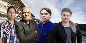 Helahälsinglands sportreportrar Leo Hägglund, Peter Axman, Fredrik Mix och Victoria Mickelsson går igenom Bollnäs, Broberg och Edsbyns chanser och möjligheter den här säsongen.