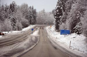 Strax öster om infarten till Ljungaverk har träd hängt över E14 en vecka, skriver signaturen
