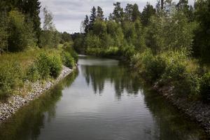 Flera av de som bor på Skatön berättar att Svartsundsrännan förfallit.