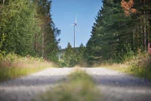 Skogarna är redan hårt ansatta och övergår kontinuerligt i monokulturer, ytterligare kultivering i form av vindkraftsgator, skriver Ove Lennström.
