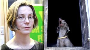 Karin Hansson, miljöchef i Ljusdal, är inte insatt i ärendet med de skällande hundarna.