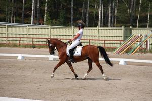 Linnea Svenskas och Galej segrare i La:1 och La:P1, 66,389% respektive 67,895% Foto: Elsa Nordström