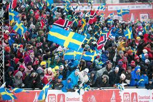 Att Falun arrangerade skid-VM 2015 på ett bra sätt, känner idrottsvärlden till, menar Richard Brisius.