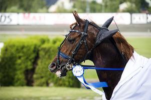 Guillaume Boko vann V75-1.