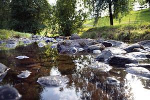 Sidsjöbäcken anses ha höga naturvärden med bland annat lekplatser för flera olika sorters fisk.