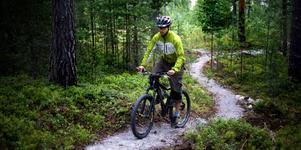 Cykling längs speciella cykelstigar lockar allt fler och det är något som också gett avtryck i antalet medlemmar hos föreningen Finnkogsriket.