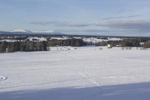 Jordbruksmarken mellan Orrgården och Åbbåsen arrenderas av mjölkbönder men det saknas aktiva bönder på plats. 5-6 gårdar ingår dock i området.