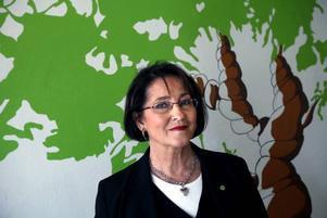 Gävlepolitikern Inger Schörling vet vad det innebär att sitta i Europaparlamentet. Under åren 1995-2004 satt hon i parlamentet för Miljöpartiet.