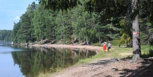 Skogen går nästan hela vägen ner till strandkanten där Orn sträcker ut sig.