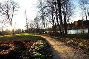 Gävlekännaren Folke Löfgren får en park vid Silvanum uppkallad efter sig. Foto: NICK BLACKMON