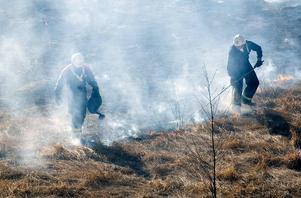 Gräsbrand. Räddningstjäsnetn fick relativt fort gräsbranden i Tjärna sandtag under kontroll. Vad som orsakade branden är ännu okänt.