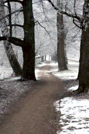 November. Bild: Hasse Andersson.