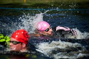 Vansbrosimningen är inte ensamma om att arrangera tävling, konkurrensen har hårdnat från andra aktörer.