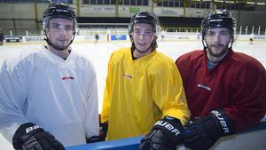 Anthony Gardner, John Bentley och Shaun Lymer hoppas på spel.