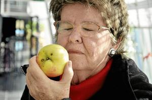 Gudomligt gott. – Känn doften, det finns inget äpple som Signe Tillisch, säger Lena Torgén och suger in aromen.