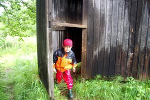 Tipsrundan på ön var rolig tyckte barnen, trots regn och rusk vid Barnens dag på Hede camping.  Foto: Carin Selldén