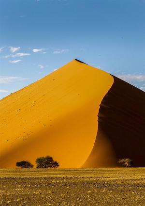 Efter 40 mils bilfärd från huvudstaden Windhoek söderut har vi nått fram och klättrat uppför de magiska sanddynerna i Sossusvlei. Dessa dyner är världens högsta och kan nå upp till 400 meter.   Foto: Jörgen Ulvsgärd